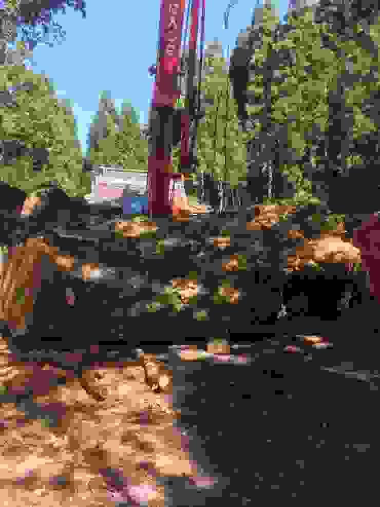 日本原生櫸木 製材所 Woodfactorytc