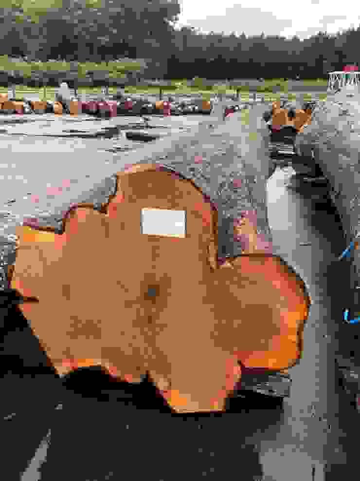 日本櫸木 製材所 Woodfactorytc