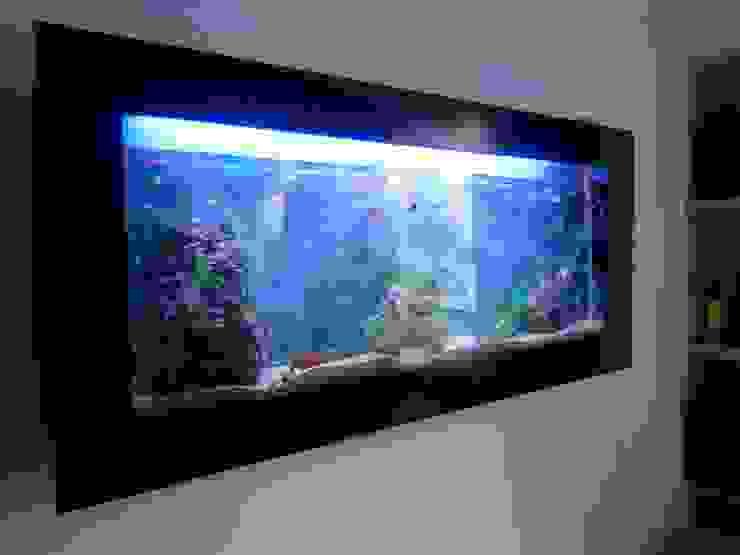Acuario de Globo Natural Moderno