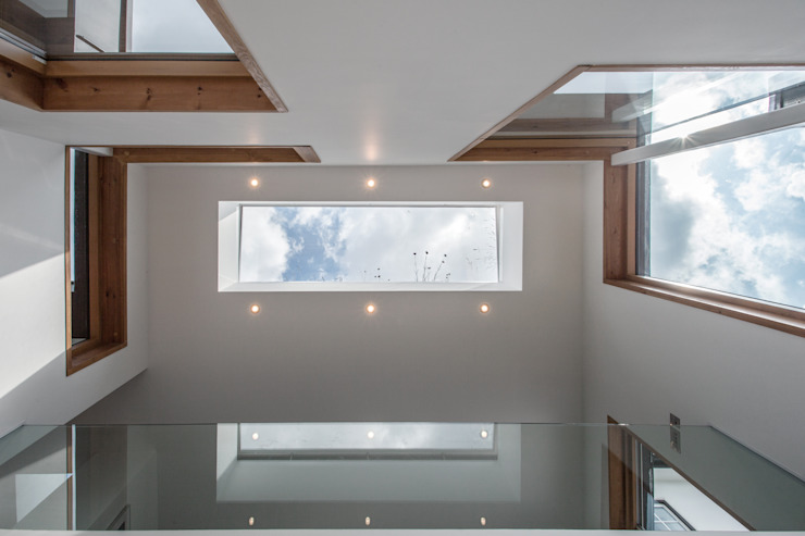 Honor Oak Red Squirrel Architects Ltd Roof