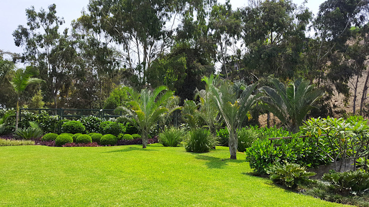 Un jardín donde el cliente se pueda sentir en un oasis particular. Jardines de estilo moderno de Marcia Lenz Paisajismo Moderno