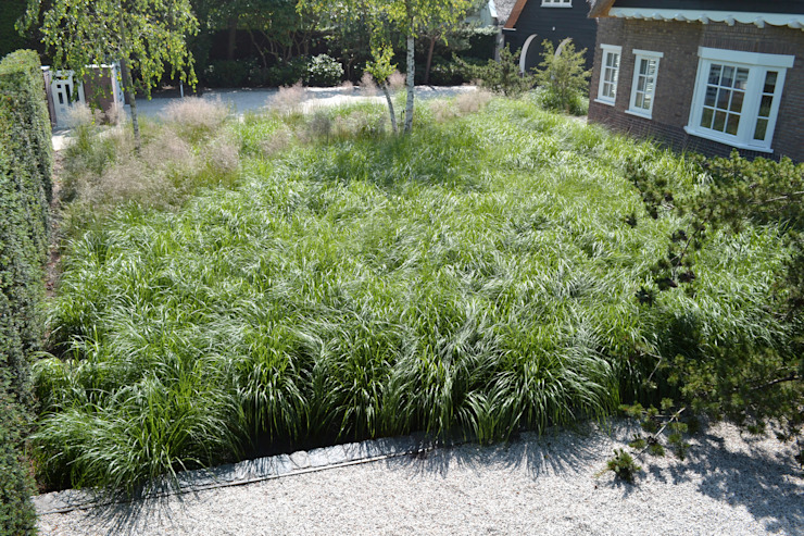 Veld emotie Minimalistische tuinen van Andrew van Egmond (ontwerp van tuin en landschap) Minimalistisch