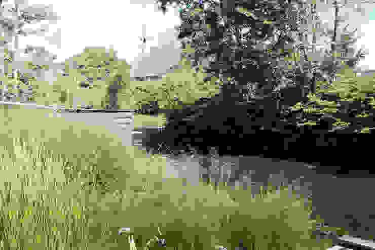 Dijktuin Amsterdam Moderne tuinen van Andrew van Egmond (ontwerp van tuin en landschap) Modern