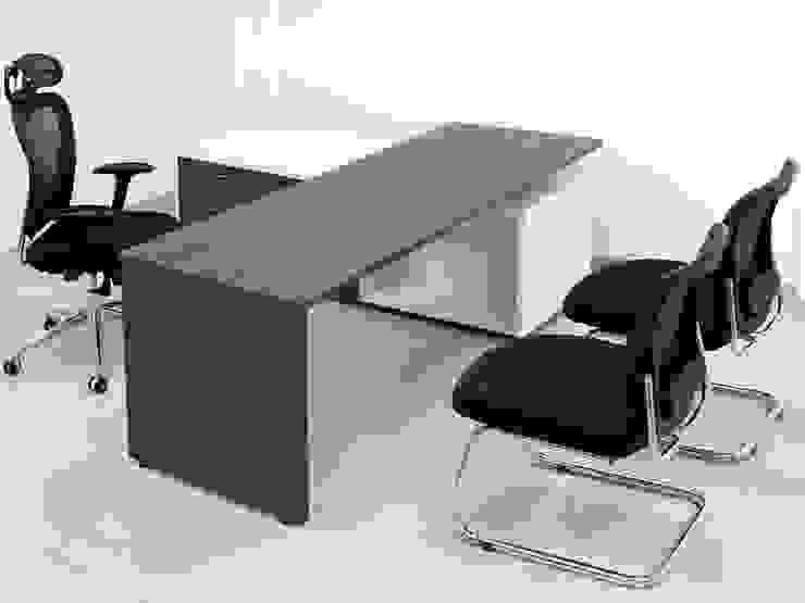 Nowoczesne domowe biuro i gabinet od MARSHEL DUART SRL Nowoczesny