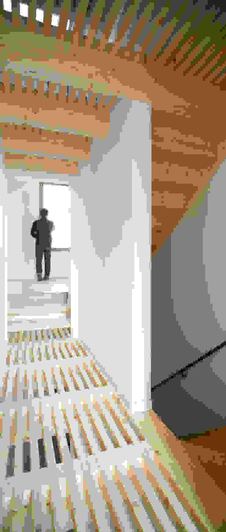 Mediterranean style corridor, hallway and stairs by AlbertBrito Arquitectura Mediterranean Wood Wood effect