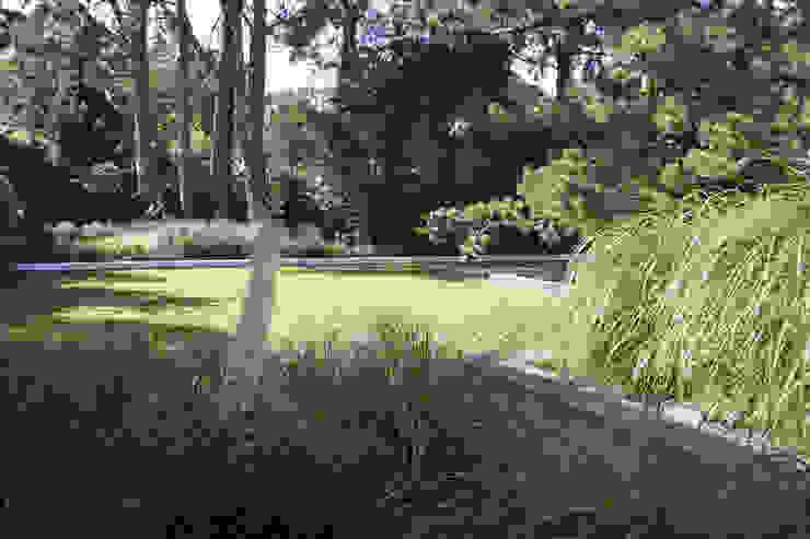 Field emotion Minimalist style garden by Andredw van Egmond | designing garden and landscape Minimalist