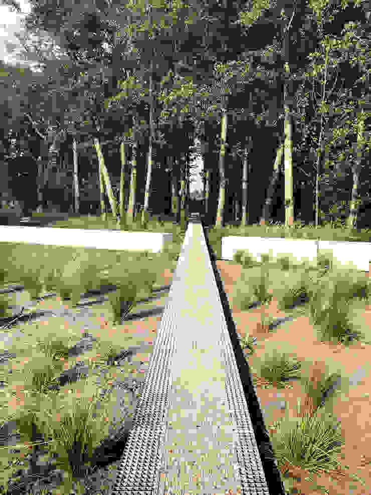 Garden in Schoorl | The Netherlands Minimalist style garden by Andredw van Egmond | designing garden and landscape Minimalist