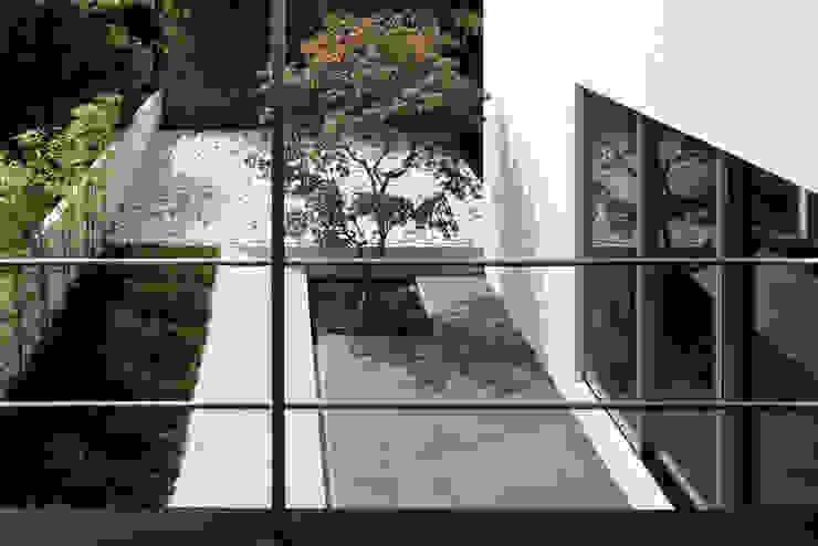 ベランダから庭を見る モダンな庭 の 松岡淳建築設計事務所 モダン