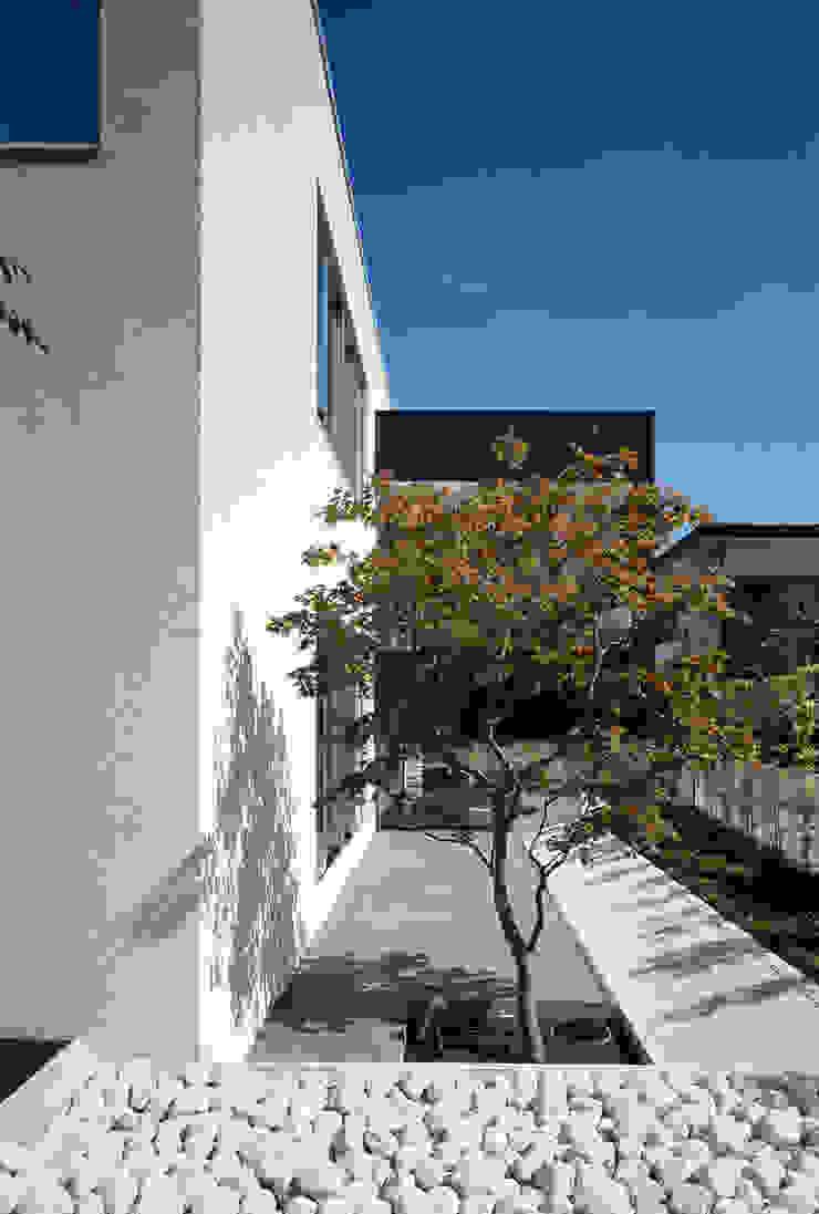 庭 モダンな庭 の 松岡淳建築設計事務所 モダン
