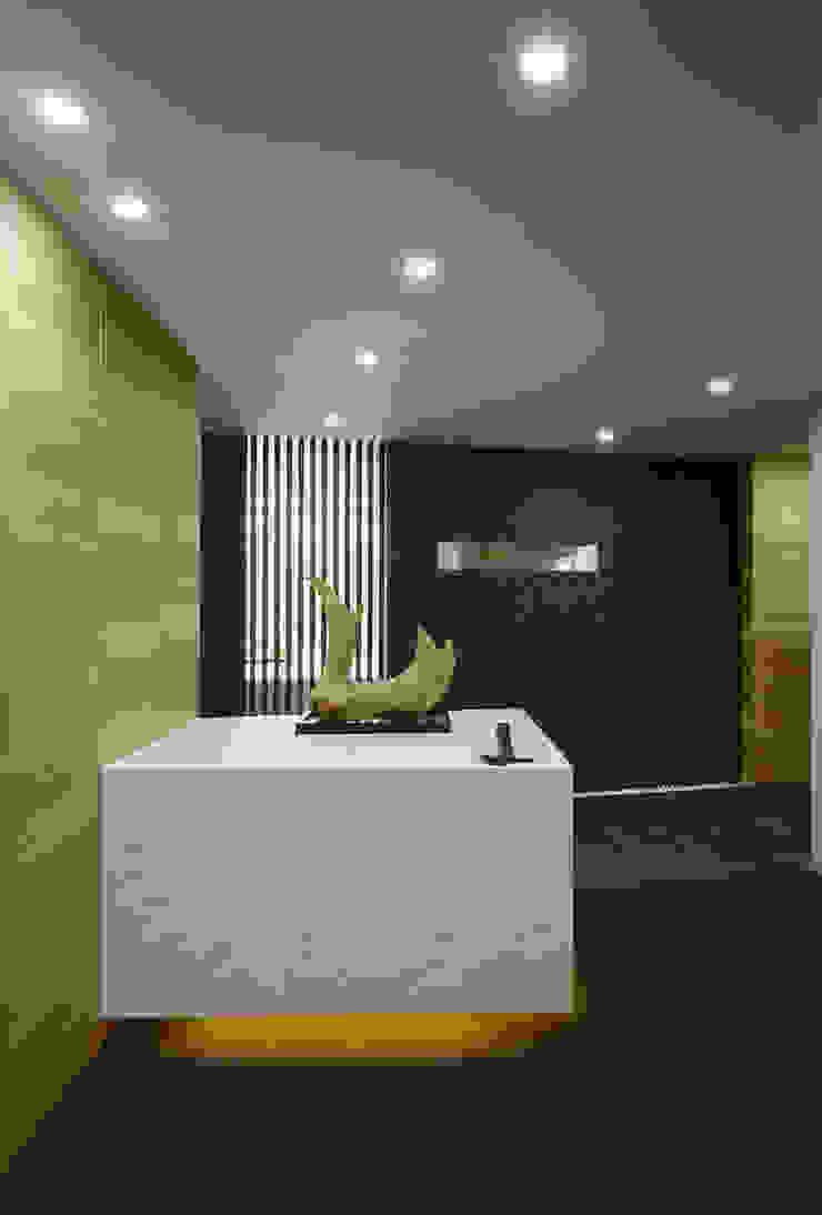 エントランス オリジナルスタイルの 玄関&廊下&階段 の 松岡淳建築設計事務所 オリジナル