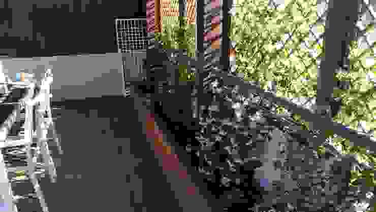 Rehabilitación de terraza en una casa de Madrid: Jardines de estilo  de La Patioteca, Moderno
