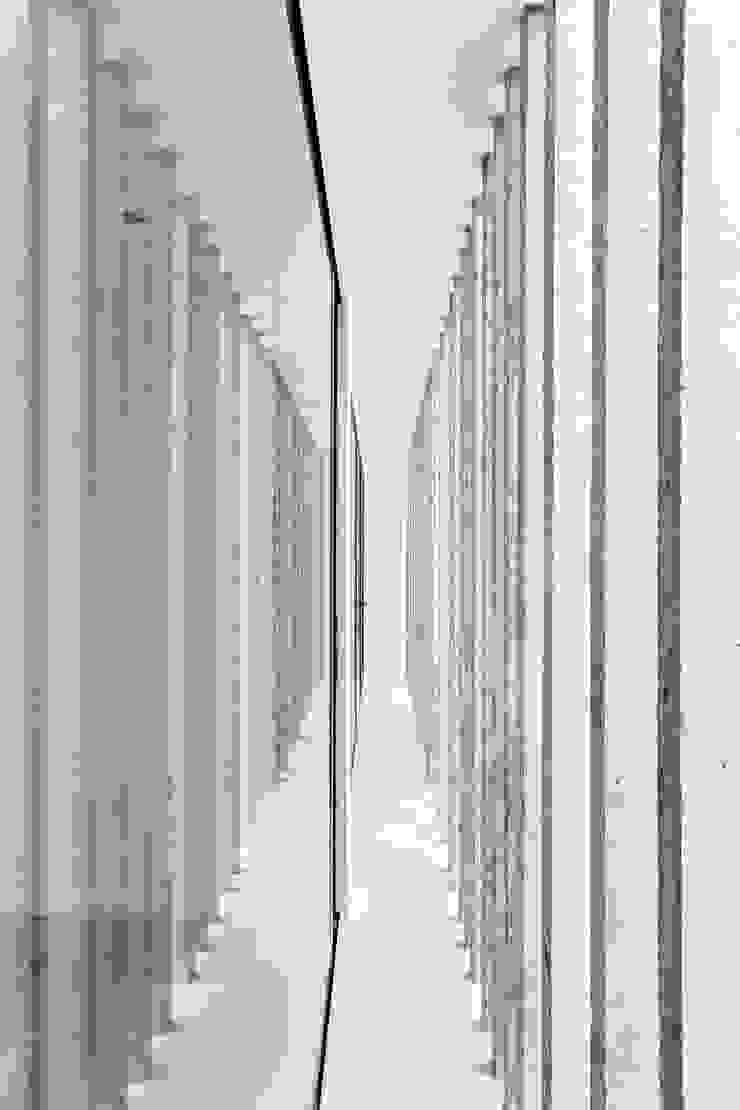 Tường & sàn phong cách hiện đại bởi SMF Arquitectos / Juan Martín Flores, Enrique Speroni, Gabriel Martinez Hiện đại