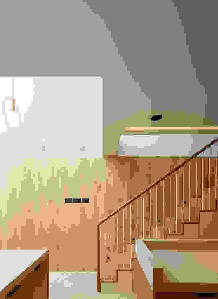 Dusheiko House Neil Dusheiko Architects Лестницы