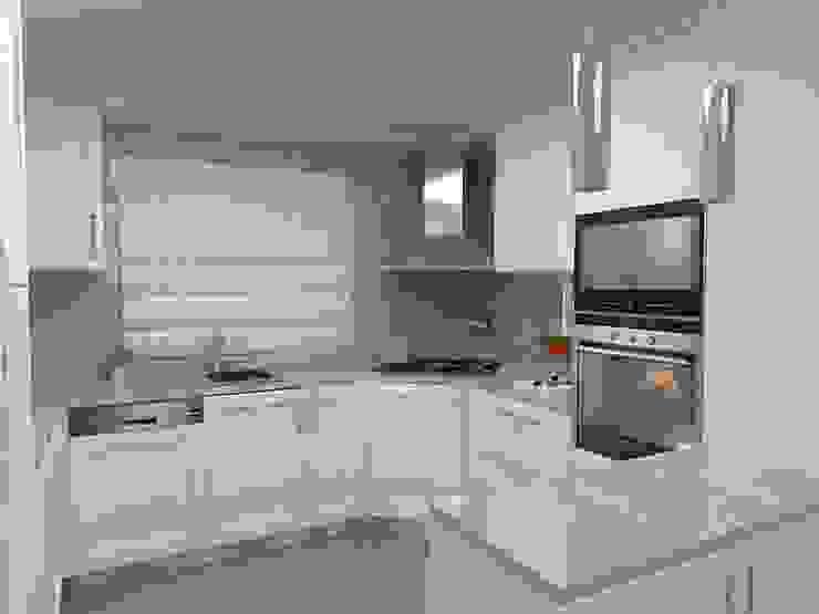 MJF Interiores Ldª KitchenCabinets & shelves