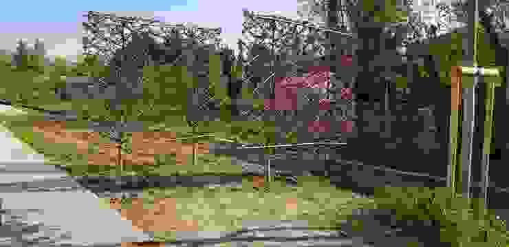 Geometrie in campagna Giardino moderno di LUCIA PANZETTA - PAESAGGISTA Moderno