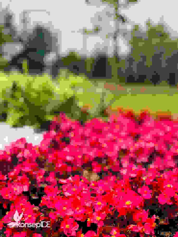 MASALKÖY öZEL KONUT Peyzaj Projelendirme ve Uygulama & Landscaping project and application Rustik Bahçe konseptDE Peyzaj Fidancılık Tic. Ltd. Şti. Rustik