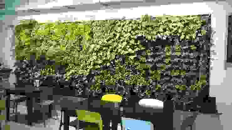 Taman menempel dinding Jasa tukang taman gresik Dinding & Lantai Tropis Bambu Green