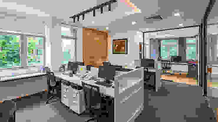 Thiết kế thi công nội thất văn phòng (V4) bởi Dandelion Design Construction Hiện đại