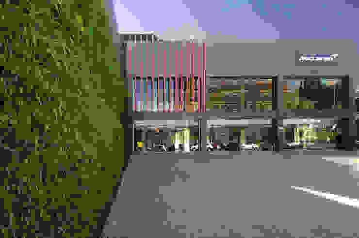 Vertical Garden - Jardim Vertical e Paisagismo Corporativo Dealer Mobil Modern
