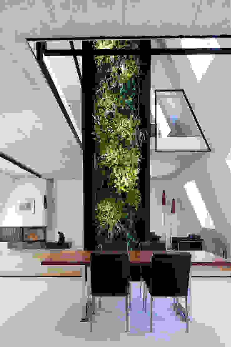 by Bachmann Badie Architekten Eclectic
