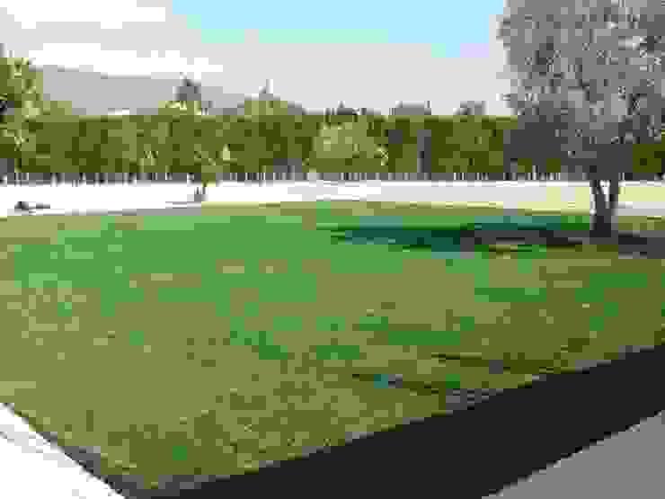 Albergrass césped tecnológico Kırsal Bahçe