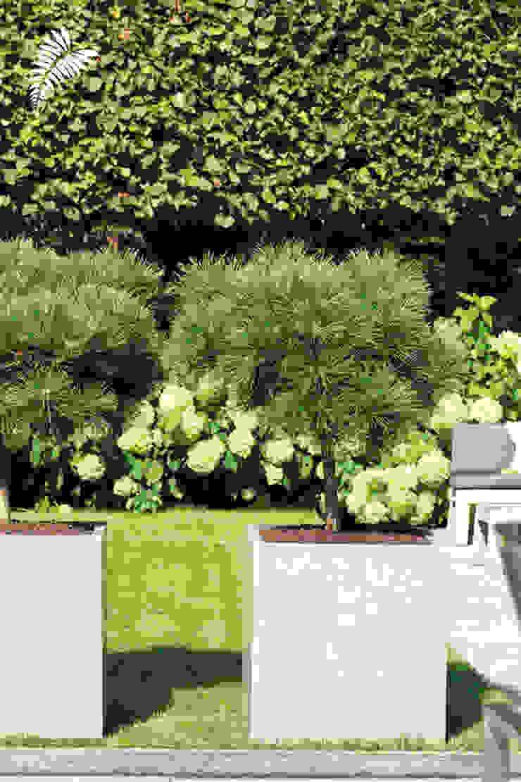 Pflanzgefäße aus Naturbeton: modern  von arts&more,Modern Beton