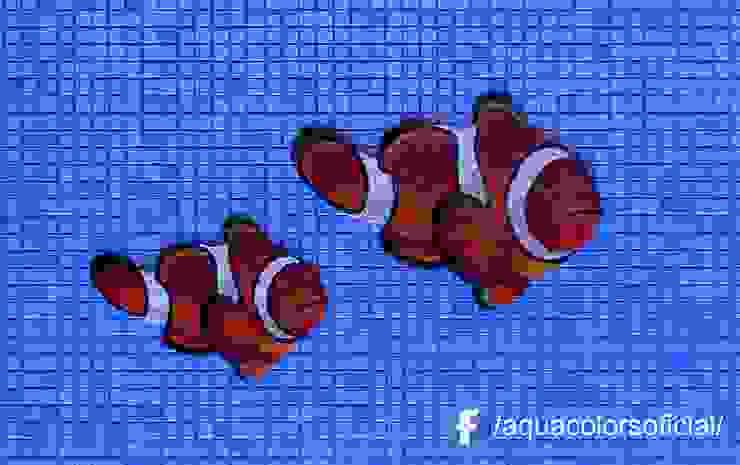F-02-39 y 30-D Peces Nemo (payaso) De Mosaico Veneciano Aquacolors / Moretti A&D Piscinas