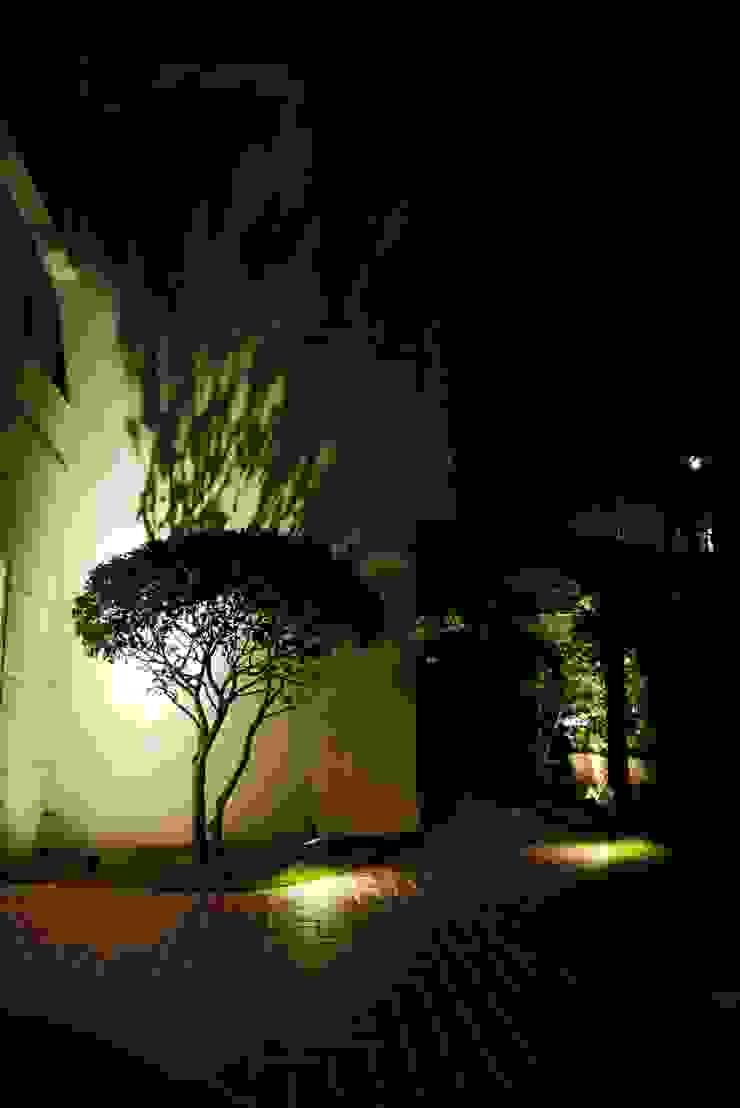 夜晚樹影透過燈光投印在屋外白牆上呈現一幅美麗的畫面: 熱帶  by 大地工房景觀公司, 熱帶風