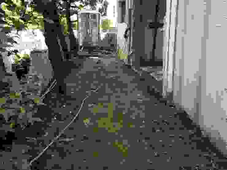 庭園施工前的樣貌: 熱帶  by 大地工房景觀公司, 熱帶風