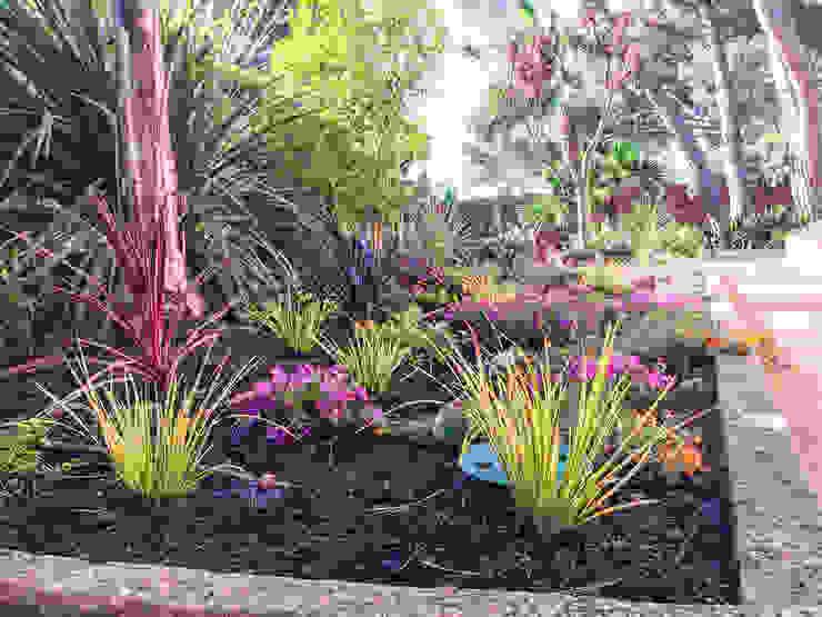 Detalle del parterre lateral a la casa Jardines de estilo tropical de Nosaltres Toquem Fusta S.L. Tropical