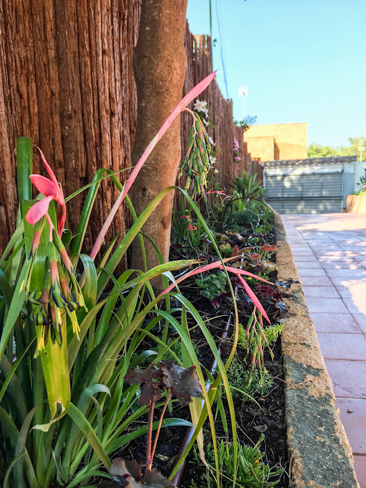 Detalle de jardinera. Jardines de estilo tropical de Nosaltres Toquem Fusta S.L. Tropical