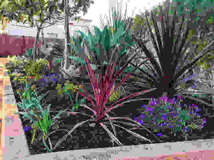 Detalle del parterre central Jardines de estilo tropical de Nosaltres Toquem Fusta S.L. Tropical