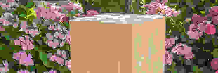 modern  by sokkel en zuilen, Modern Wood Wood effect