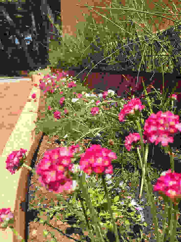 Detalle jardinera lateral a la casa. Jardines de estilo tropical de Nosaltres Toquem Fusta S.L. Tropical