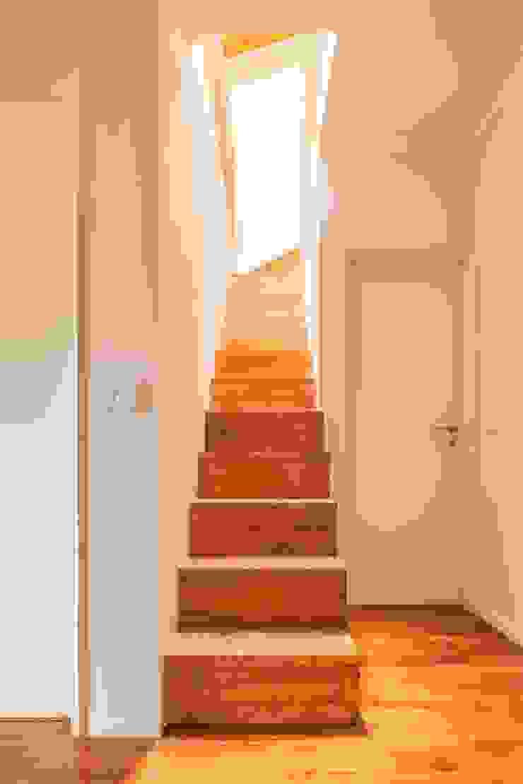 Boost Studio Escaleras Madera Acabado en madera