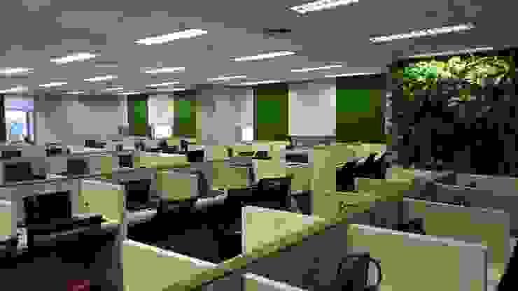 Radikari Office Bangunan Kantor Tropis Oleh Studié Tropis