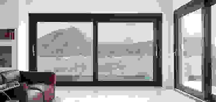 DGV metal srl Windows & doors Windows Wood-Plastic Composite Brown