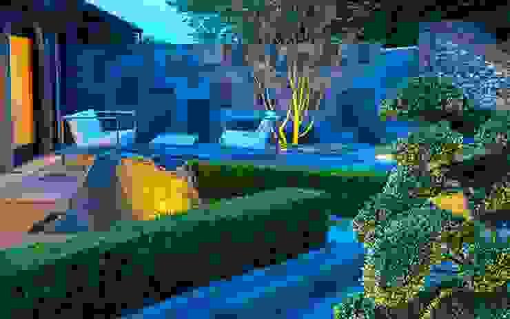 Hedging design MyLandscapes Garden Design 庭院