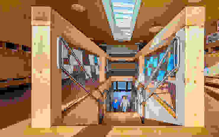 Treppe Moderne Schulen von archipur Architekten aus Wien Modern Holz Holznachbildung