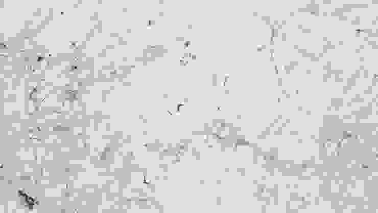 Đá cẩm thạch trắng Gioia: hiện đại  by Công ty TNHH truyền thông nối việt, Hiện đại
