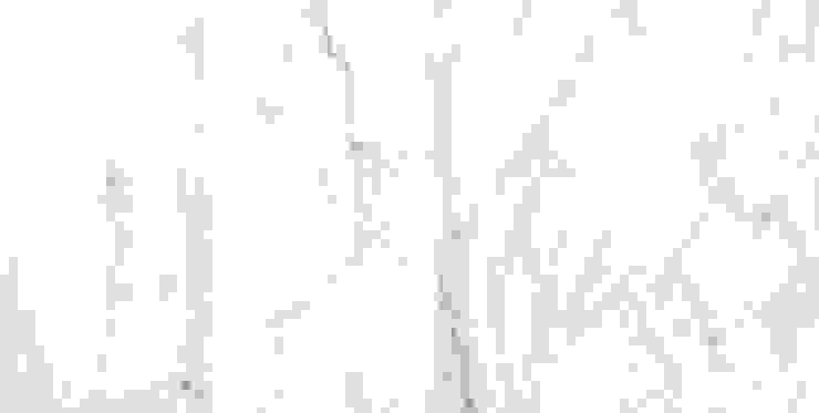 Đá Venatino Marble: hiện đại  by Công ty TNHH truyền thông nối việt, Hiện đại