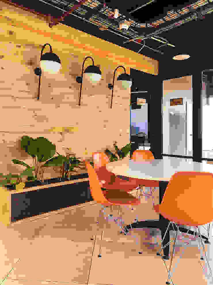 Enchape muro sala de reuniones Paredes y pisos de estilo moderno de Mocca Mobiliario Moderno Madera maciza Multicolor