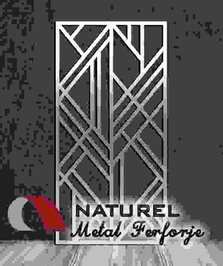 LAZER KESİM DEKORATİF EKRANLAR Modern Klinikler NATUREL METAL FERFORJE Modern Metal
