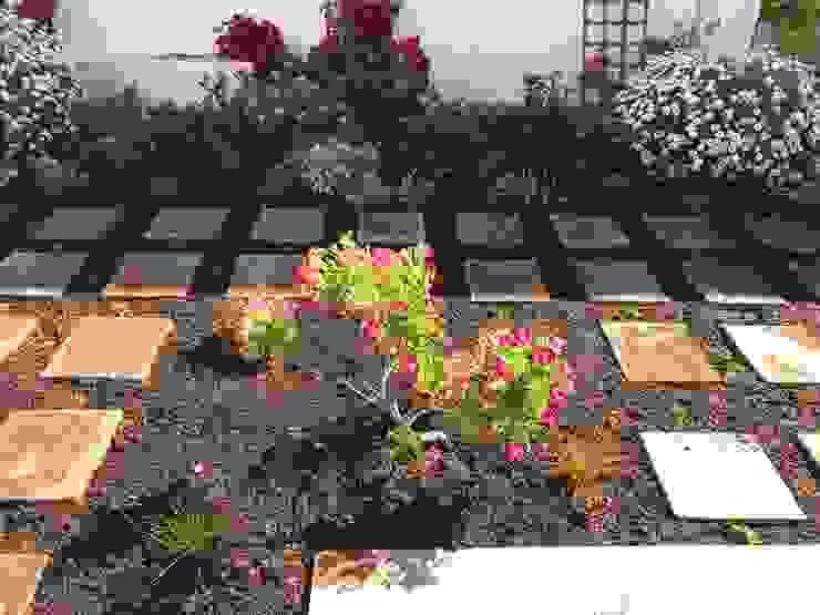 Garden revamp – Constantia by Village Gardens