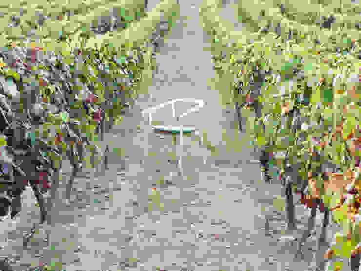 DORA Chair - Vineyard por DAM Mediterrânico Madeira Acabamento em madeira