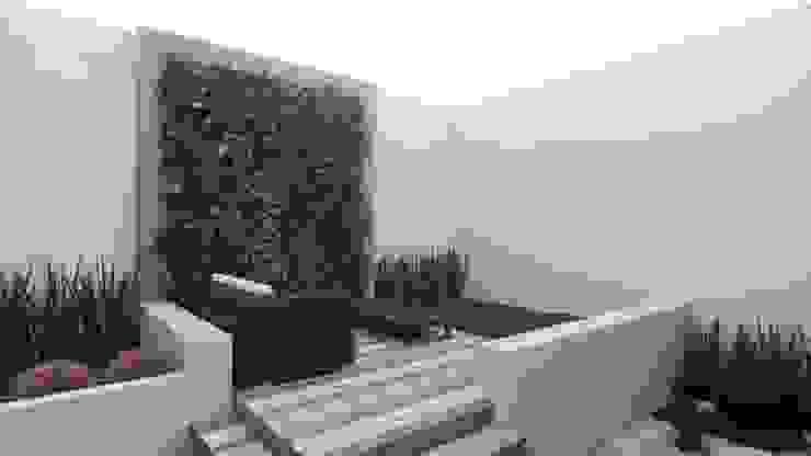 Yoga Space EDMtz Architecture and Archviz Jardines modernos Verde