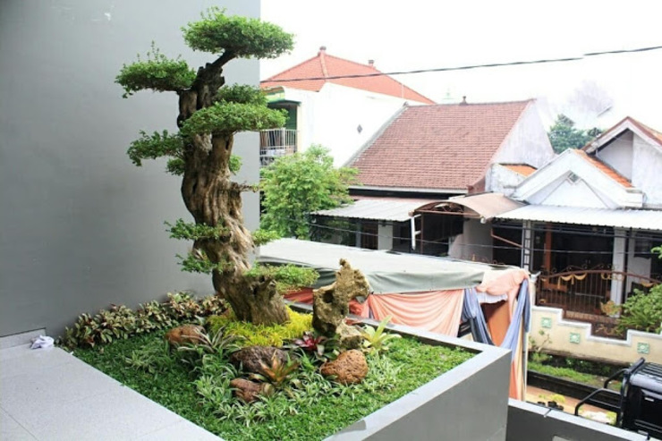 Jasa Pembuatan Taman Sidoarjo Jasa Pembuatan Taman Ruang Komersial Minimalis Green