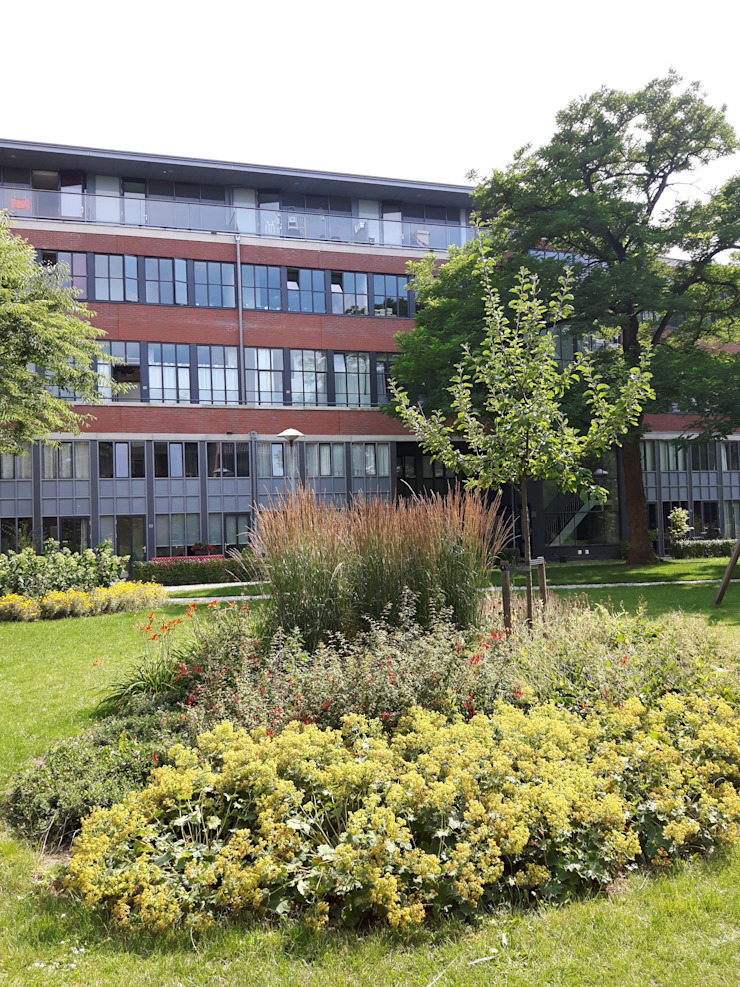 Stedelijke ruimte Boekhoven Bosch Moderne tuinen van groenpartners Modern