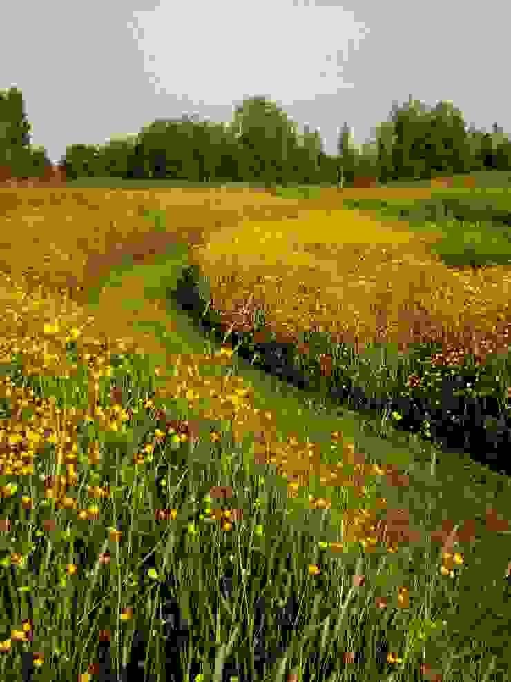 Nieuwe natuur bij buitenplaats Vreedenhorst Landelijke tuinen van groenpartners Landelijk