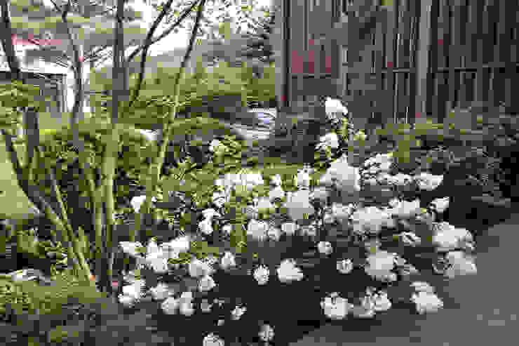 Вилла с садом в стиле модерн. КП Бенелюкс. 2012 г от ARCADIA GARDEN Landscape Studio Модерн
